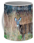 Brushed Fawn Coffee Mug