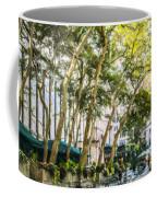 Bryant Park Midtown New York Usa Coffee Mug