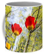 Bryant Park Tulips New York  Coffee Mug