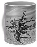 Bryce Canyon Tree Art Coffee Mug