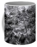Bubbling Water Brook In The Smokies Coffee Mug