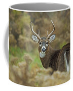 Buck Fever Coffee Mug