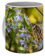 Buckeye Butterfly Coffee Mug