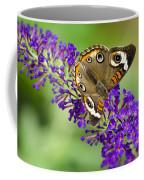 Buckeye Butterfly On Purple Flowers Coffee Mug