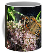 Buckeye Butterfly On Sedum Coffee Mug
