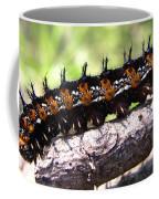 Buckeye Caterpillar 2 Coffee Mug