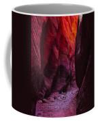 Buckskin Gulch 13 Coffee Mug