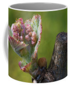 Bud-break Coffee Mug