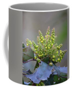 Budding Mahonia Coffee Mug