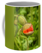 Budding Poppy Coffee Mug