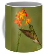 Buff-tailed Coronet Hummingbird No 1 Coffee Mug