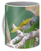 Buff-throated Saltador Coffee Mug