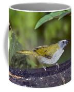 Buff-throated Saltator Coffee Mug