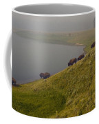 Buffalo   #0237 Coffee Mug