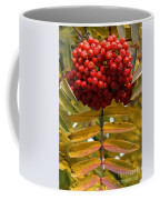 Buffalo Berries Coffee Mug
