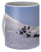 Buffalo Herd In Snow   #6075 Coffee Mug