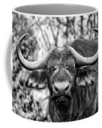 Buffalo Stare In Black And White Coffee Mug