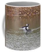 Buffleheads 1 Coffee Mug