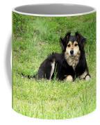 Buffy/faithful Companion Coffee Mug
