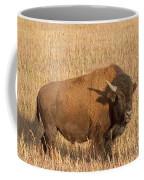 Bull Bison At The  Elk Ranch Grand Teton National Park Coffee Mug