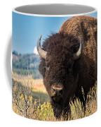 Bull Bison Coffee Mug