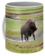 Bull Bison Shaking In Yellowstone National Park Coffee Mug