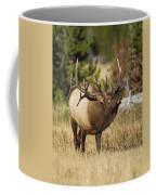 Bull Elk II Coffee Mug