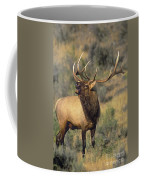 Bull Elk In Rut Bugling Yellowstone Wyoming Wildlife Coffee Mug