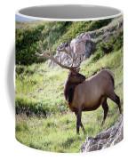 Bull Elk In Velvet Coffee Mug