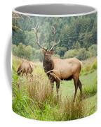 Bull Elk On Watch Coffee Mug