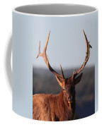 Bull Elk Portrait Coffee Mug