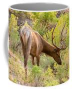 Bull Elk Profile Coffee Mug