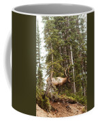 Bull Elk Stands Guard Coffee Mug