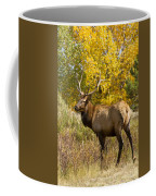 Bull Elk With Autumn Colors Coffee Mug