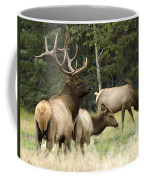 Bull Elk With His Harem Coffee Mug by Bob Christopher