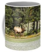 Bull In Waiting Coffee Mug