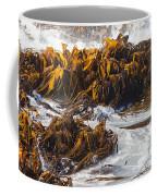 Bull Kelp Durvillaea Antarctica Blades In Surf Coffee Mug