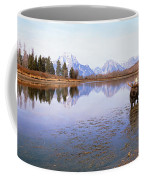 Bull Moose Grand Teton National Park Wy Coffee Mug