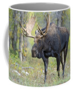 Bull Moose IIIIi Coffee Mug