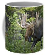 Bull Moose Shedding Velvet Coffee Mug