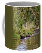 Bull Moose Summertime Spa Coffee Mug