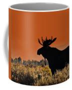 Bull Moose Sunset Coffee Mug
