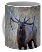 Bull Roar Coffee Mug