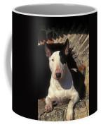 Bull Terrier Dog Coffee Mug