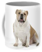 Bulldog, Female Coffee Mug