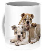 Bulldog Puppies, One On Top Of The Other Coffee Mug