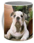Bulldog Puppy With Flowerpots Coffee Mug