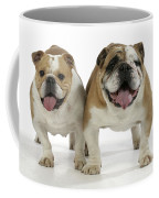 Bulldogs, Male And Female Coffee Mug