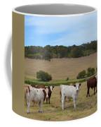 Bulls And Cow Coffee Mug