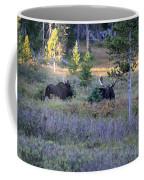Bulls In The Meadow Coffee Mug